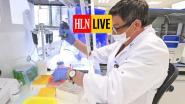 LIVE. Voorzitter van expertengroep Vlieghe wil vierpersonenregel vereenvoudigen - 257 nieuwe besmettingen, 31 overlijdens in ons land