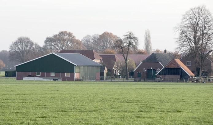Achter dit boerderijtje aan de Diepenheimseweg op de Needse Berg zouden de varkensstallen moeten komen. Het plan is van de baan als Berkelland uitbreiding van de varkenshouder in Noordijk toestaat.