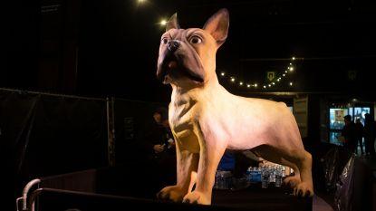 """Buldog Billie ontvangt drieduizend bezoekers op craftbierfestival: """"Belgische bierdrinker is conservatiever dan andere"""""""