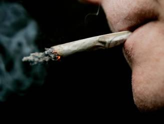 Politie controleert opnieuw lijnbussen: 6 drugstoeristen en 47 zwartrijders betrapt