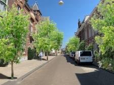 De 'warmste binnenstad van West-Europa' snakt naar groen, Tilburg investeert 1,1 miljoen euro