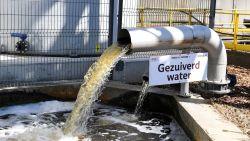 """Nu ook 'brouwerijwater' van Stella Artois voor planten in provinciedomein Kessel-Lo: """"Stad Leuven haalde al 1 miljoen liter op sinds begin juni"""""""