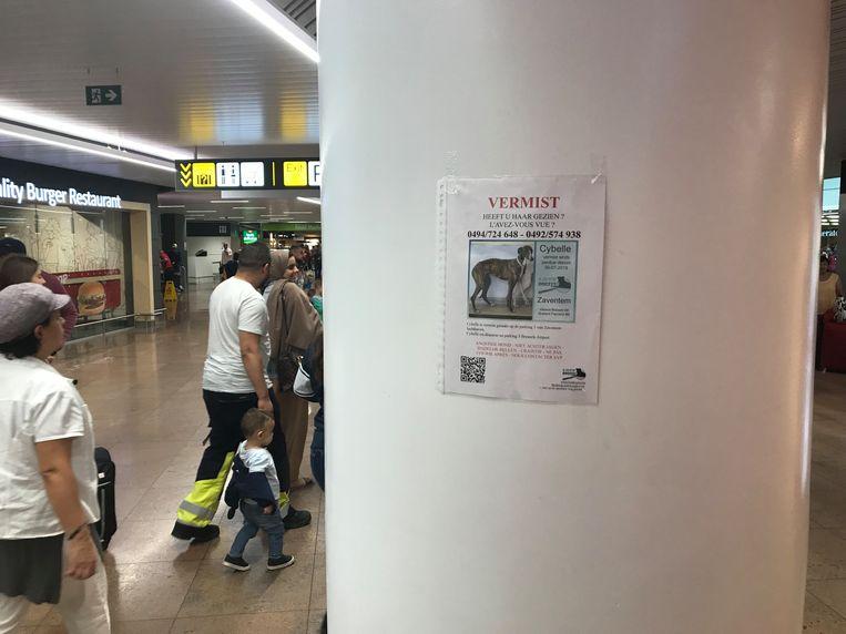 Massale zoekactie rond de luchthaven