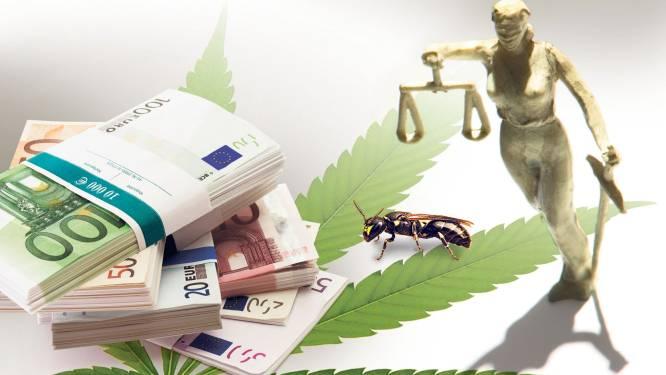 Maskerbij-bende hoeft maar één procent drugswinst te betalen maar kan zelfs dat niet opbrengen