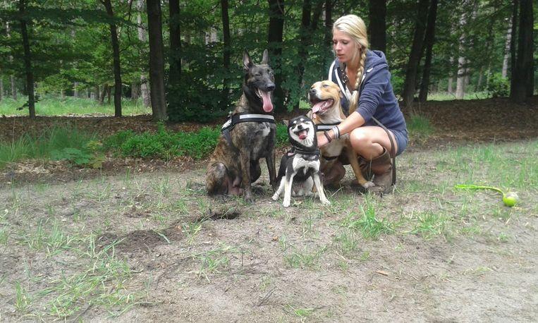 Ilse Van Dijken met Kuma (midden) en de twee andere honden.