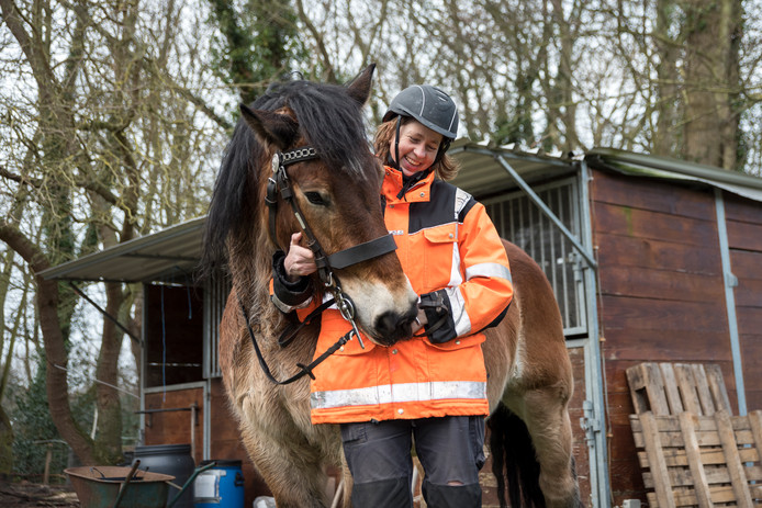 """Bertie Steur met ruin Mac, die ze mag lenen van Martin Loeve uit Noordwelle. Mac is een pittig paard, die aan alle eisen voldoet die een voorrijder nodig heeft. ,,Hij kan voorop gaan, maar kan zich ook losmaken van de groep."""""""