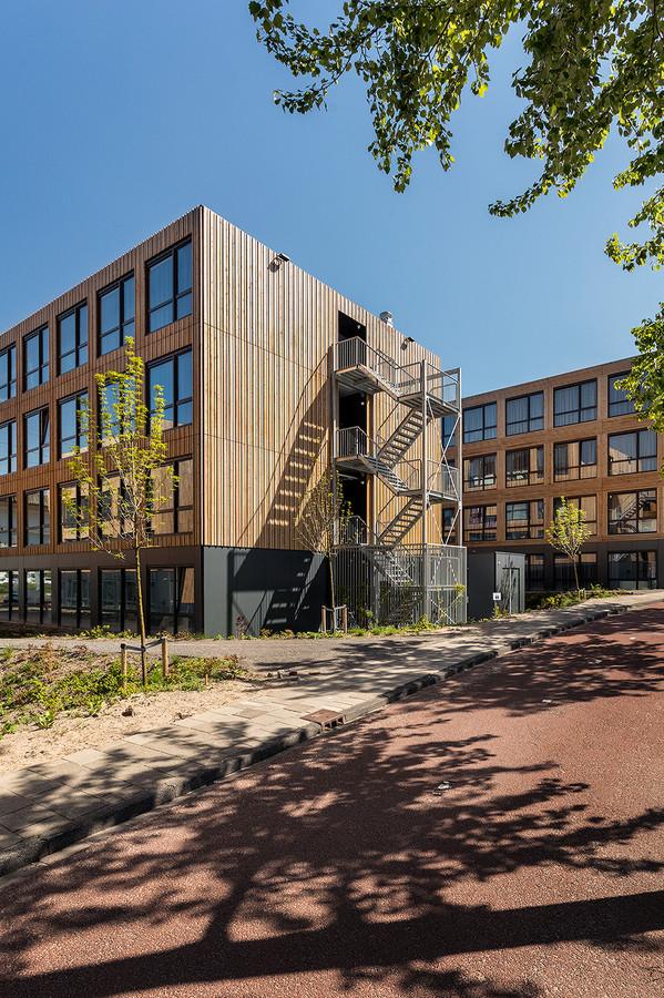 Tijdelijke studentenwoningen van het bedrijf Jan Snel: het WASA Student Village in Amsterdam.