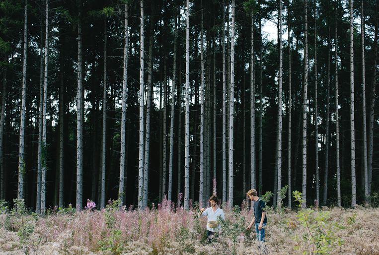 Ben Brumagne van Forest To Plate woont in de Franse Ardennen, naast een immens bos waar hij workshops organiseert.   Beeld Yuri Andries