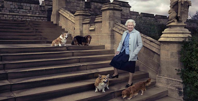 April 21, 2016. In this official photograph released by Buckingham Palace to mark her 90th birthday, Queen Elizabeth II is seen walking in the private grounds of Windsor Castle on steps at the rear of the East Terrace and East Garden with four of her dogs: clockwise from top left Willow (corgi), Vulcan (dorgie), Candy (dorgie) and Holly (corgi). *** Local Caption *** * Beeld BrunoPress/PhotoShot