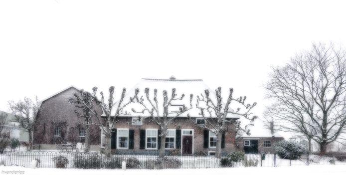 De bomen steken duidelijk af tegen de witte sneeuw, maar het dak lijkt langzaam verdwenen.