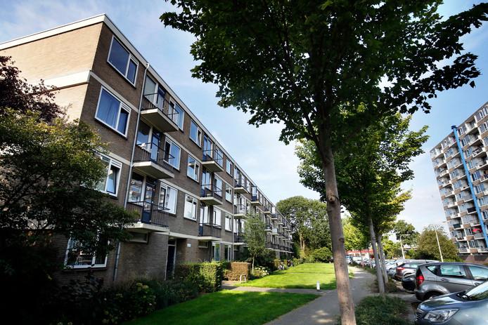 De Vereniging van Eigenaars van deze flat aan de Smedenstraat besloot onlangs om de afvoer van het regenwater los te koppelen van de vuilwaterriolering.