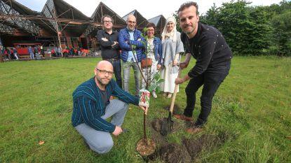 """Comforte plant boom voor elke klant met elektronische dienstencheques: """"Kan een mooi bos opleveren"""""""