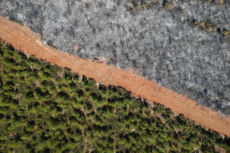 Een luchtbeeld toon rechts de ravage na een bosbrand in het Mugla-district. Beeld AFP