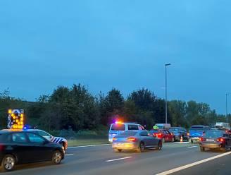 Hinder op E40 richting Gent na ongeval met politiecombi in Erpe-Mere