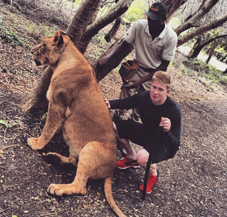 Kevin de Bruyne met een leeuwin. Een van zijn hobby's is dieren. Beeld