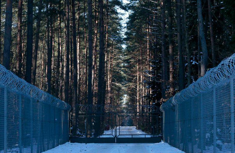 Een mogelijke geheime CIA-gevangenis in de Poolse bossen. Beeld REUTERS