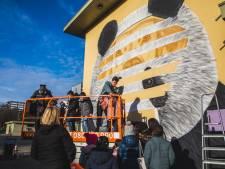 """Muurschildering van Cee Pil siert gevel van basisschool De Panda: """"Graffiti moet Nieuw Gent meer kleur en uitstraling geven"""""""