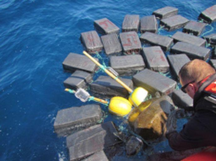 De zeeschildpad sleurde 800 kilogram cocaïne met zich mee.