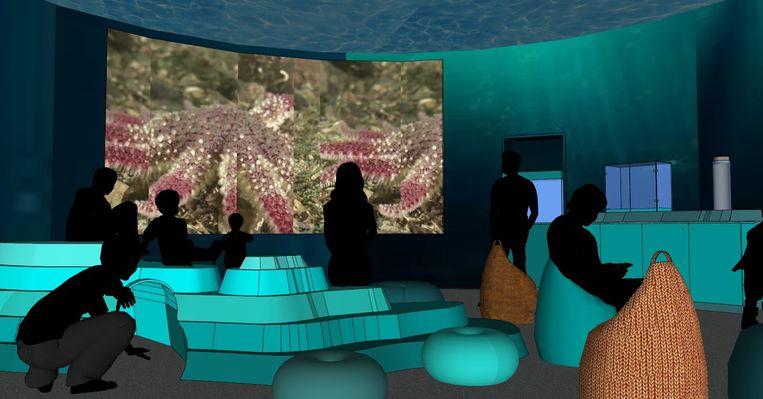 Een toekomstbeeld van de filmzaal, waar de biodiversiteit in de Noordzee wordt getoond.