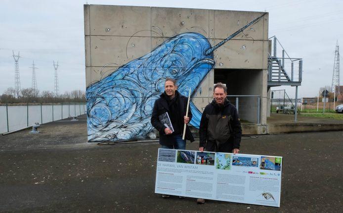 De aangespoelde narwal heeft een eigen tentoonstelling gekregen in een paviljoen van het Zeesluis Wintam Onthaalcentrum (ZWOC).  Op de foto Jan Haelters (KBIN) en Erik De Keersmaecker (Natuurpunt Rupelstreek).