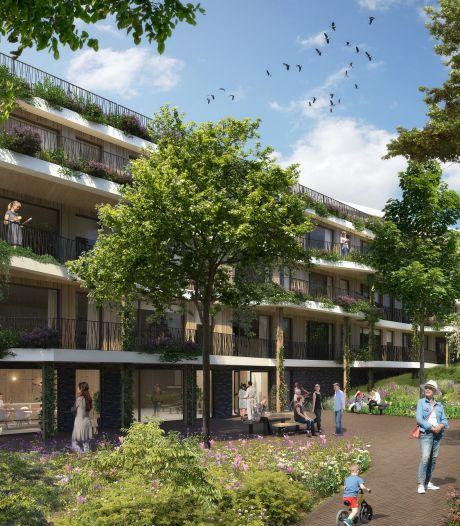 Pijnacker krijgt er 100 houten woningen bij, voor jongeren en ouderen