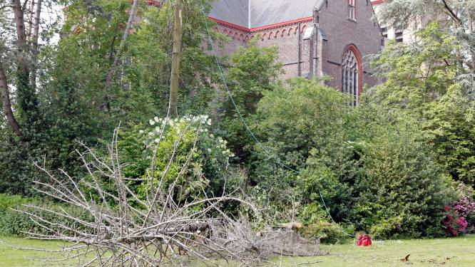 Eerste beheerwerken in 'Park van Lille'