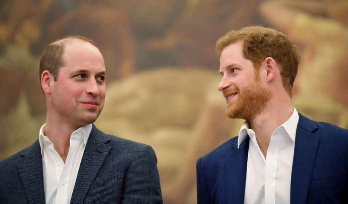 Prinsen William en Harry.
