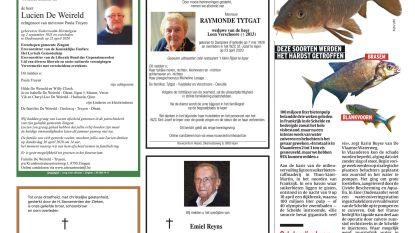 """""""95% van vissen in de Schelde is gered"""""""