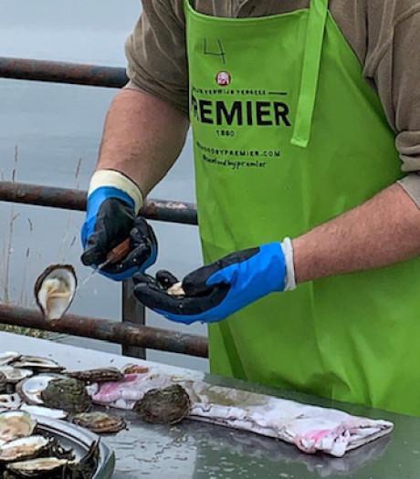 Moergestelnaar wurmt zich tussen de Zeeuwen bij het oestersteken