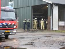 Brand in melkveestal Beerze snel onder controle