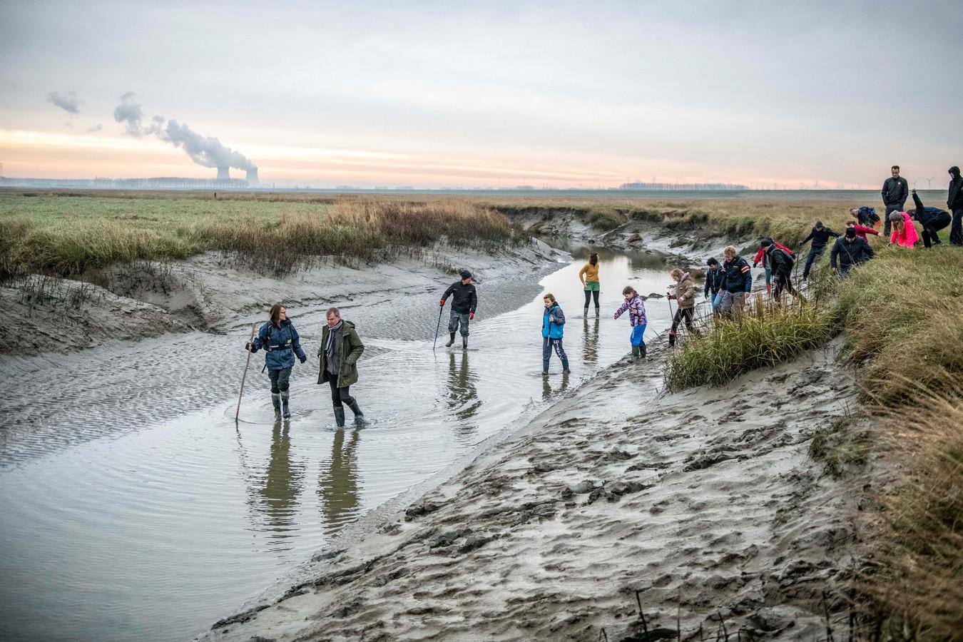 Excursie door het Verdronken Land van Saeftinghe.
