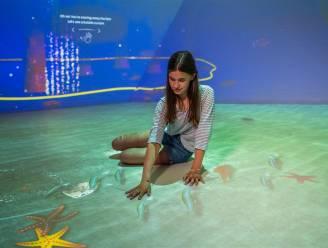 Hier waan je je op de bodem van de zee: Technopolis opent expo mét zomerbar Zeekracht