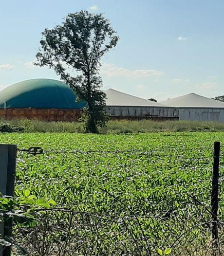 Bernheze daagt provincie voor rechter vanwege groei mestfabriek Nistelrode