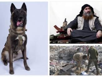 De heldhaftige K9-hond die gewond raakte bij de raid tegen al-Baghdadi