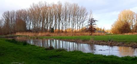 ARK aan de slag in Dommeldal voor extra natuur en leembos