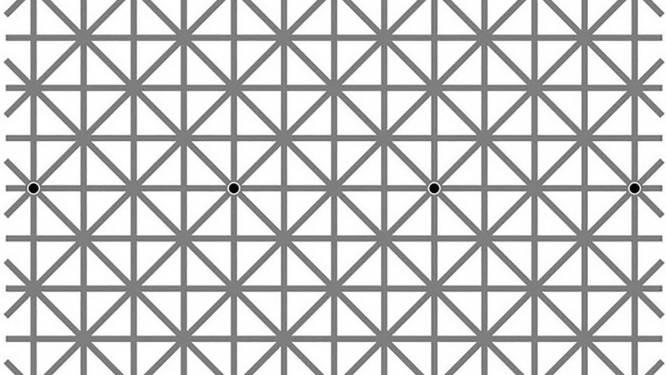 Hoeveel zwarte stippen zie jij op deze tekening?