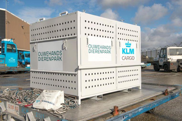 null Beeld KLM Cargo
