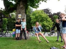 Opluchting in Woerden: oude kastanjebomen op Exercitieveld hoeven toch niet te worden gekapt