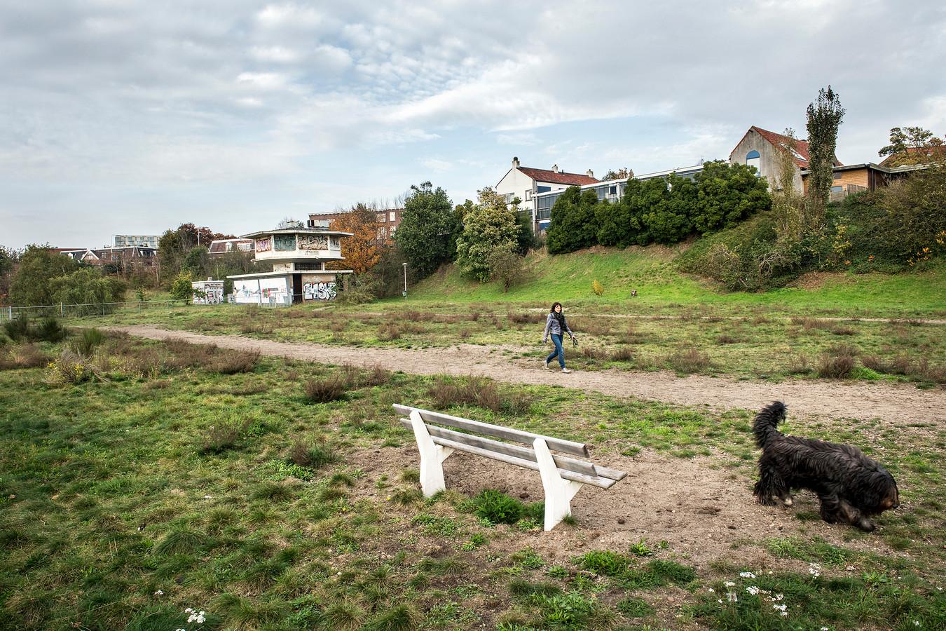 De Spoorkuil bij de Nijmeegse wijk Bottendaal. Met het seinhuisje en de zeldzame wilde averuit.