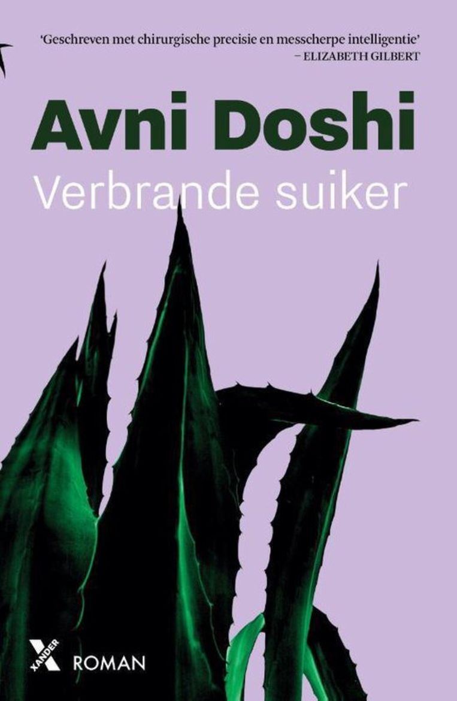 Avni Doshi, 'Verbrande suiker', Xander Uitgevers, 301 p., 20,99 euro. Vertaling Luud Dorresteijn en Maaike Harkink.   Beeld rv