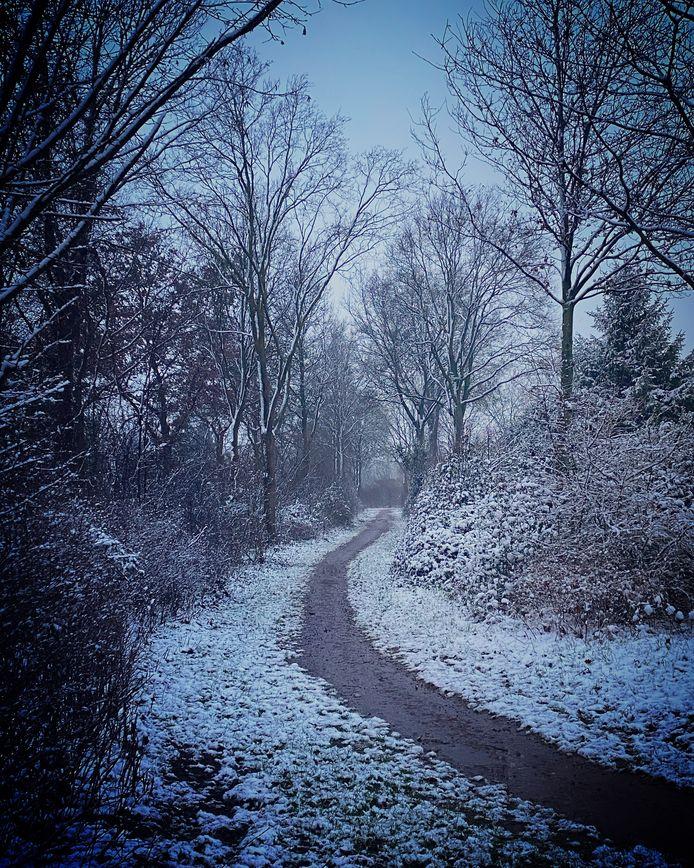 Sneeuw in Etten.