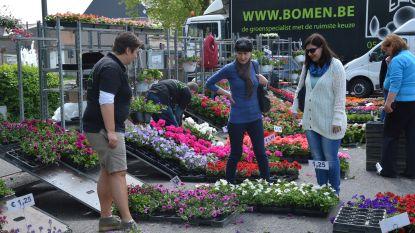 Bloemen-, tuin- en biomarkt op Graanmarkt