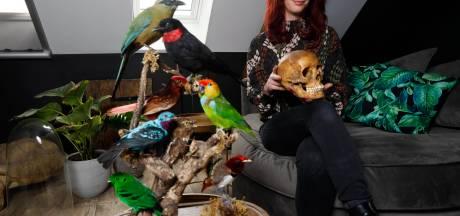 Sophie heeft een huis vol dode dieren: 'De blik die een dier in z'n ogen heeft is prachtig'