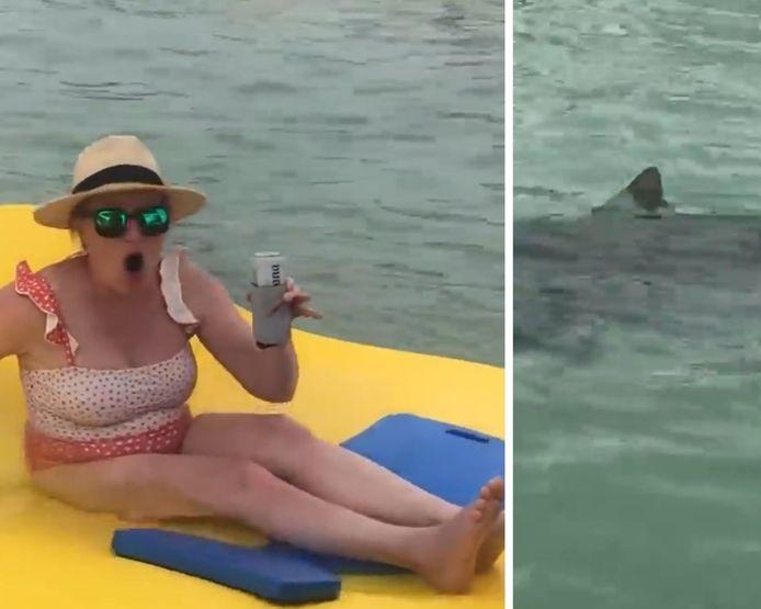 7 requins-marteaux sont venus au bord d'une plage de Floride, où se trouvaient de nombreux baigneurs.