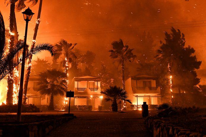 Vorige week woedde een natuurbrand in de buurt van Loutraki, dezelfde Griekse regio waar in 2018 door een natuurbrand 88 mensen om het leven kwamen, onder wie één Belg.