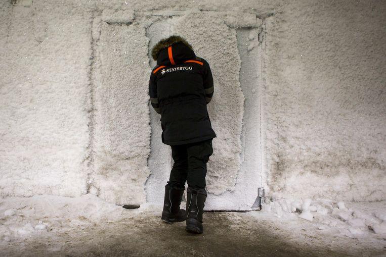 Bijna 700 miljoen zaden vanuit de hele wereld liggen opgeslagen op een plek waar niets wil groeien: Spitsbergen. Zo beschermt Noorwegen de landbouwschatten tegen rampspoed. Foto: Julius Schrank. Beeld