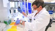 OVERZICHT. Gemiddeld nog 82 besmettingen met coronavirus per dag