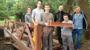 Leerlingen VITO bouwen brug in Wuustwezel