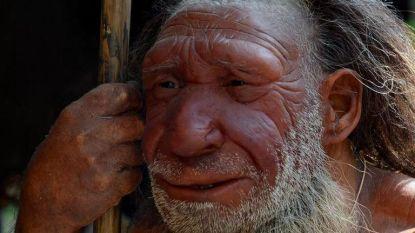 De neanderthaler gebruikte zijn handen met precisie, als een schilder