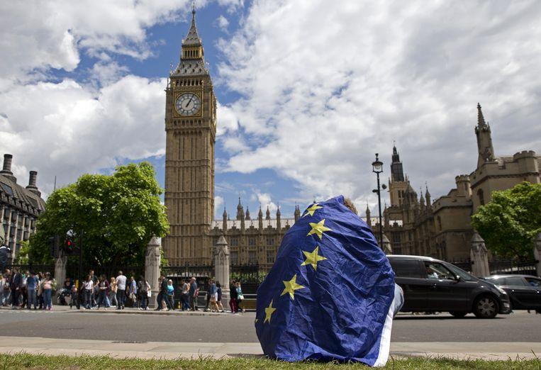 Demonstrant in Londen, gewikkeld in de EU-vlag, laat zijn ongenoegen met Brexit blijken. Beeld AFP